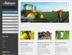 如何免费建立wrodpress博客网站