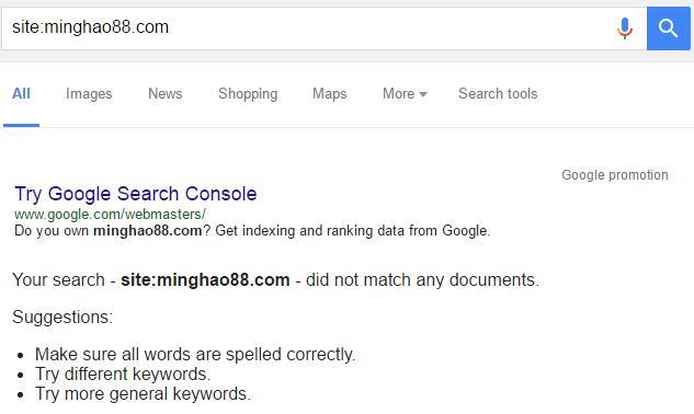 google网站搜索