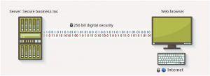 图解什么是SSL certificate