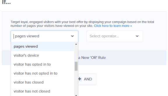 显示规则可用于定位优惠和细分电子邮件列表