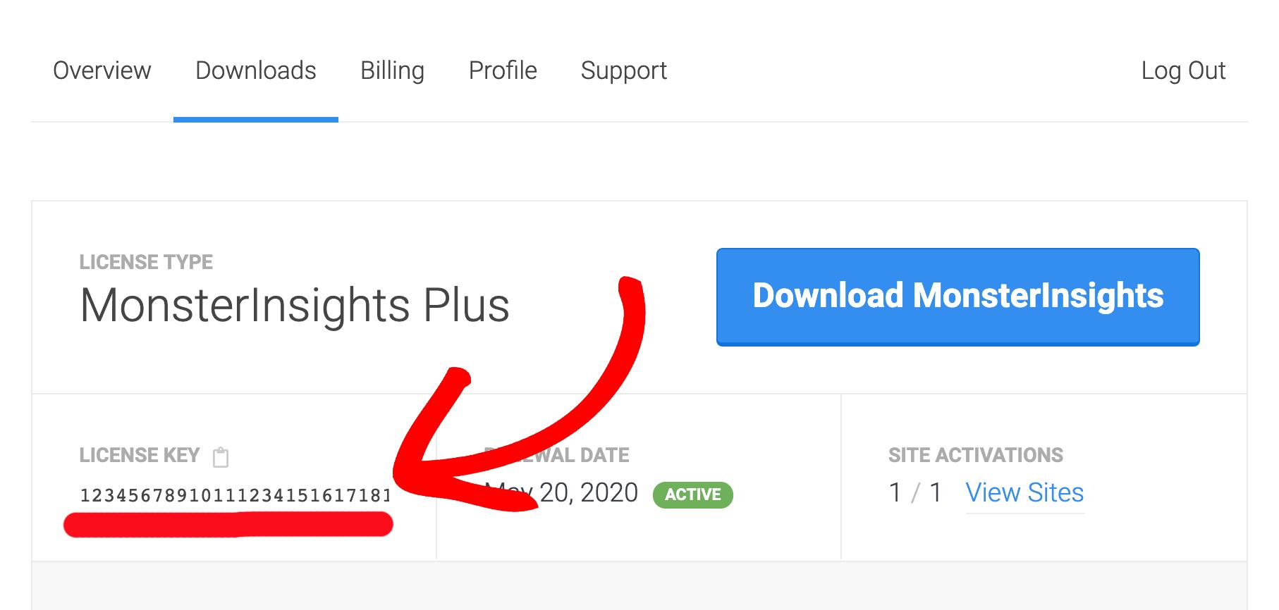 monsterinsights许可密钥