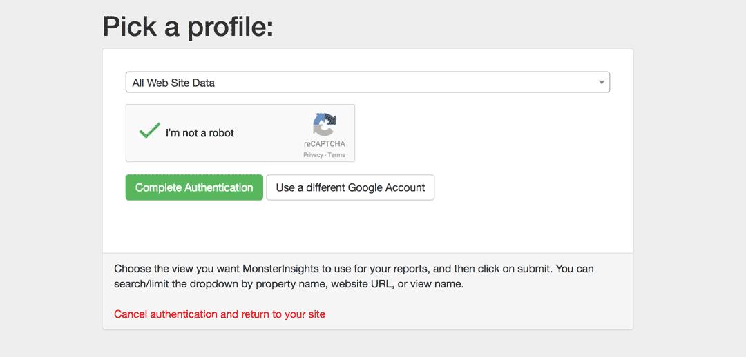 选择要通过MonsterInsights进行身份验证的网站