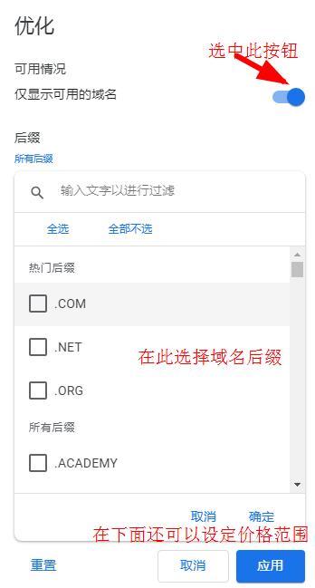 google domains域名搜索设置